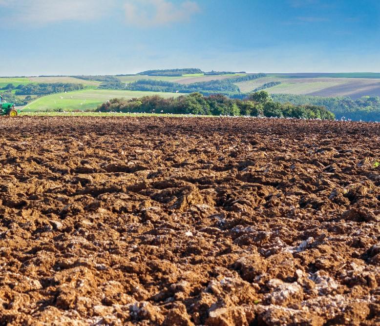 Terrassement agricole sur Chartres